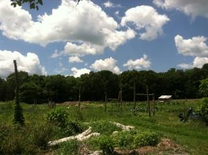 Sidewalk Ends Farm and Red Planet Farm