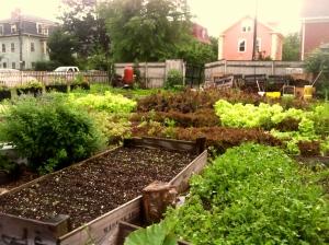 Sidewalk Ends Farm